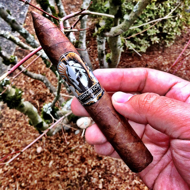 Man O War Ruination Belicoso cigar